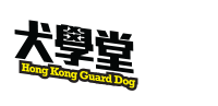 Hong Kong Guard Dog