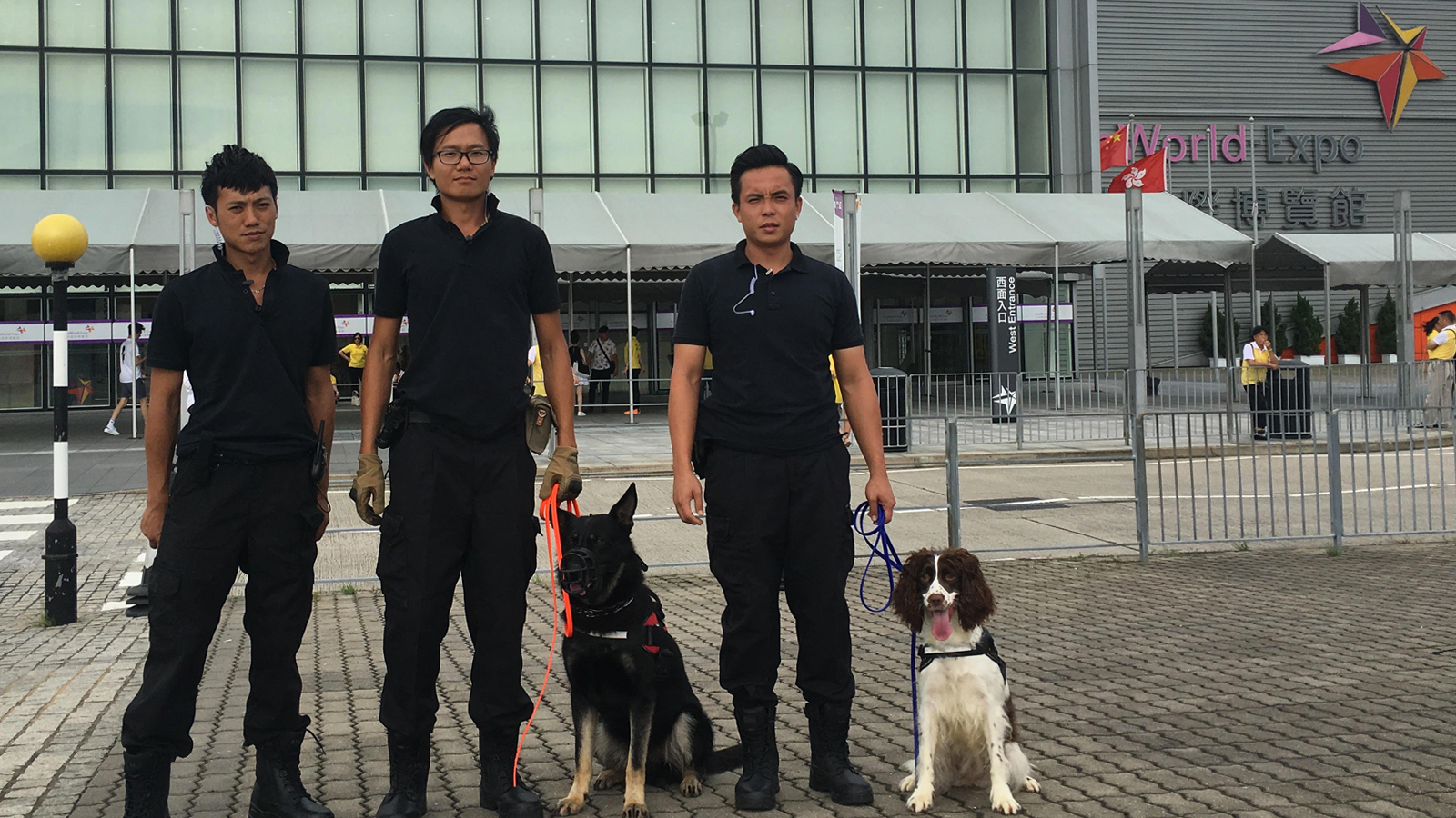 guarddog-team